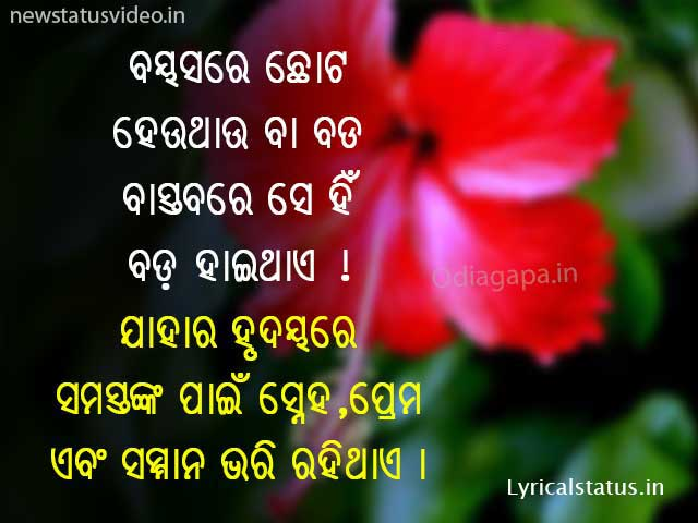 Best New Odia Shayari Photo for whatsapp Status Odia